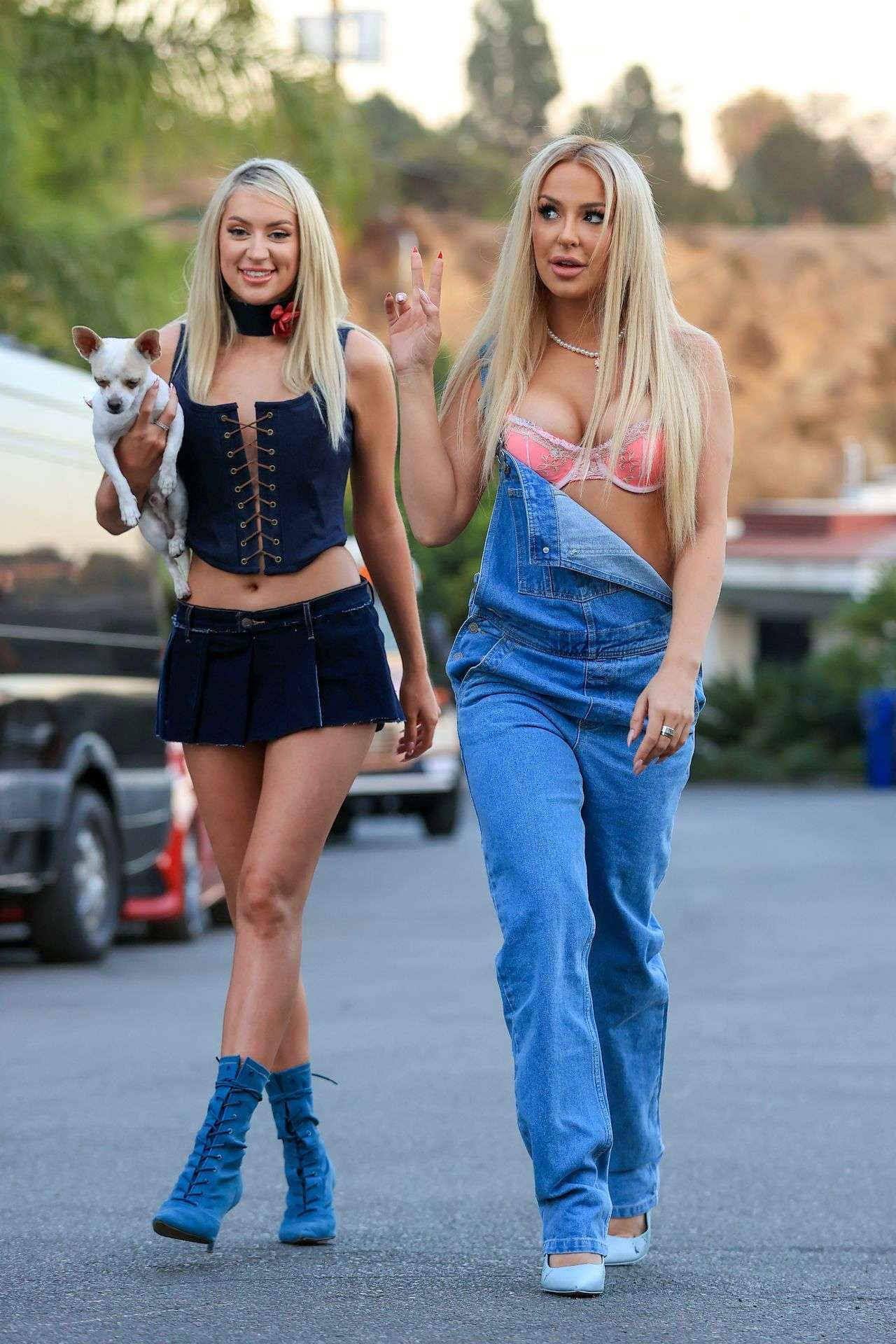 Tana Mongeau and Ashley Schwan Dress Up Like Paris and Nicole from The Simple Life for Halloween
